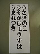 うさぎのこjpg.JPG