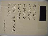 たんぽぽjpg.JPG
