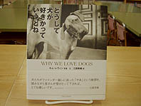 どうして犬が好きかっていうとねjpg.JPG